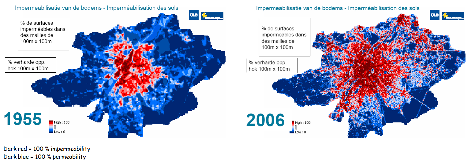 Figure 2: Evolution degree of surface impermeability Brussels and surroundings (1955-2006)