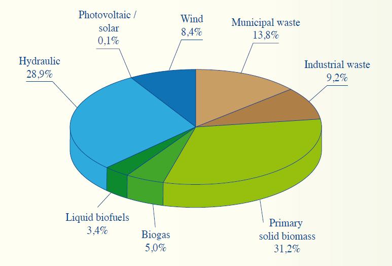 Figure 4: Primary generation of renewable energy in Belgium (2007).