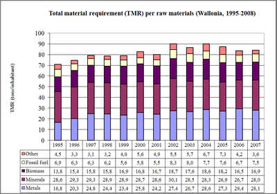 Figure 12: The Total Material Requirement (TMR) by raw material in the Walloon Region (1995 - 2007)